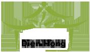 dien hong_logo